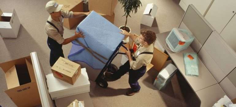 Two movers moving boxes in an office