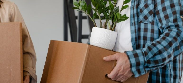Man carrying a cardboard box with a plant on top.